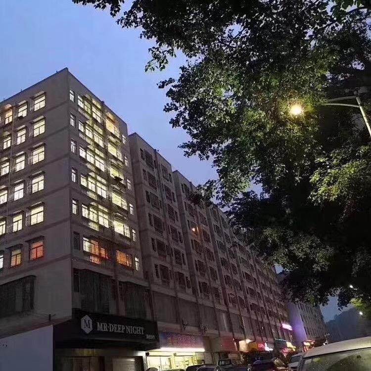 龙华观澜小百丽大型村委房总价29.8万起