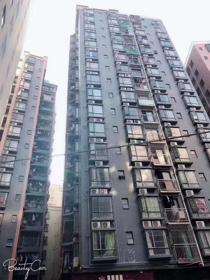 民治-伽乐园 三栋统建楼精装复式返租4000/月起