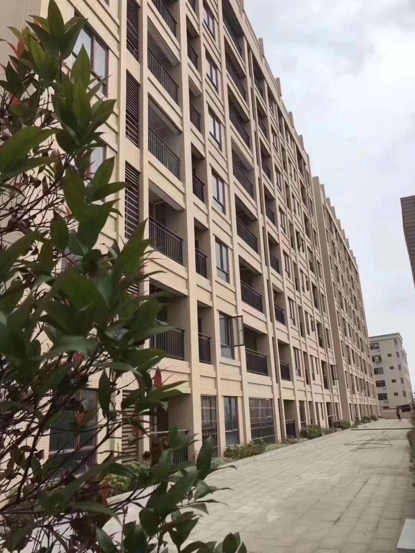 滨海新区沙田-新城花园 6栋大型花园小区首付3成 分期5年